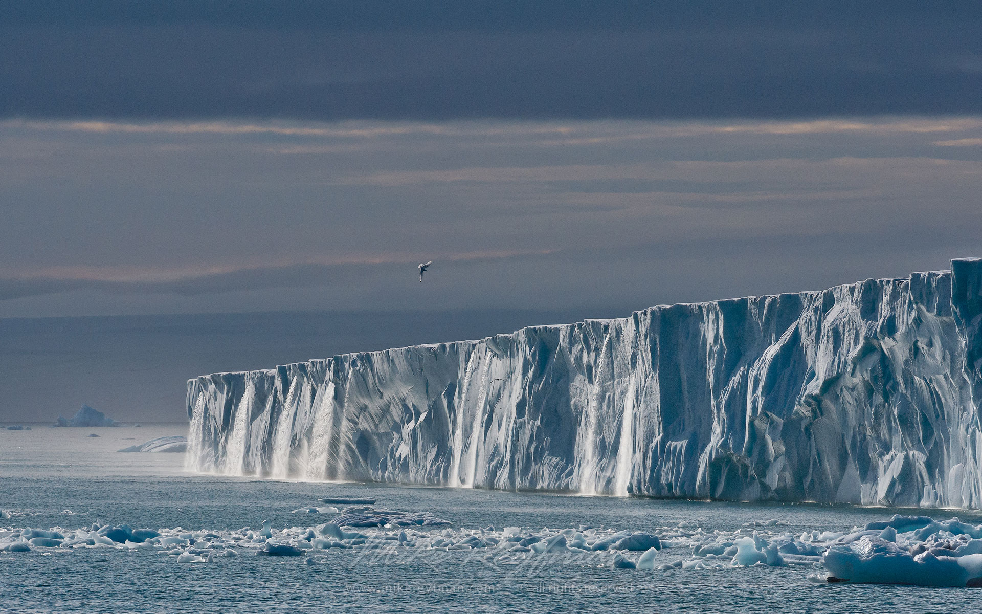Meltwater waterfalls flowing off the Austfonna Ice Cap. Svalbard (Spitsbergen) Archipelago, Norway. - Arctic-Landscape-Svalbard-Spitsbergen-Norway - Mike Reyfman Photography