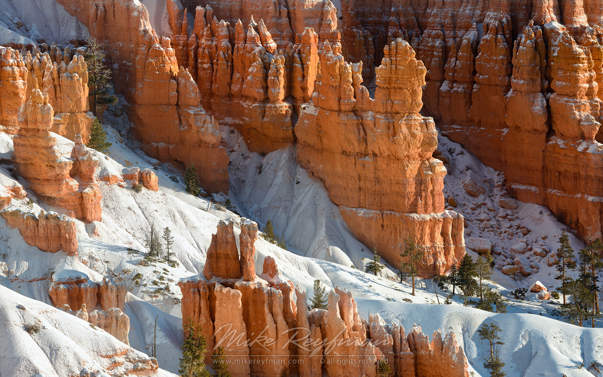 Flame and Snow. Bryce Canyon National Park, Utah, USA. - Bryce-Canyon-National-Park-Utah-USA - Mike Reyfman Photography