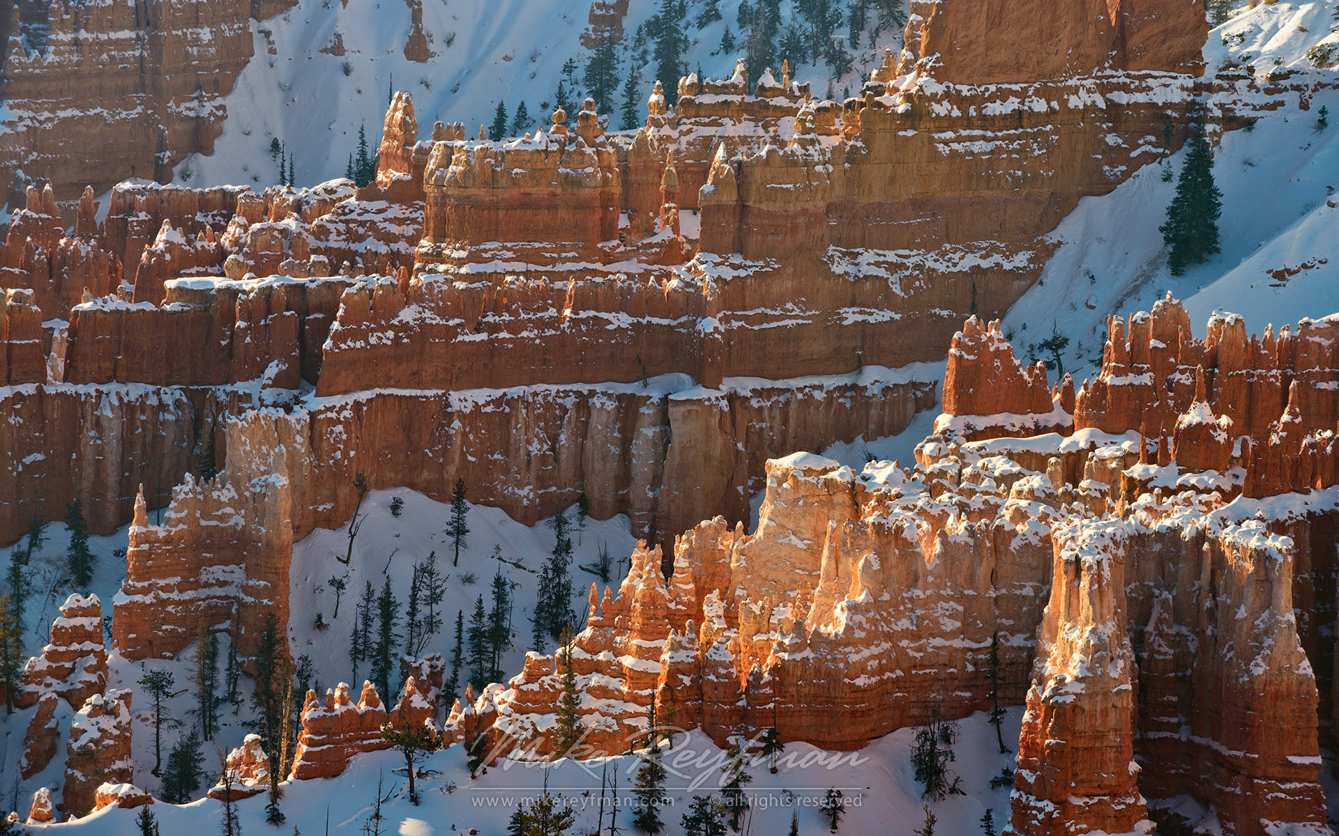 Walls and Spires. Bryce Canyon National Park, Utah, USA. - Bryce-Canyon-National-Park-Utah-USA - Mike Reyfman Photography