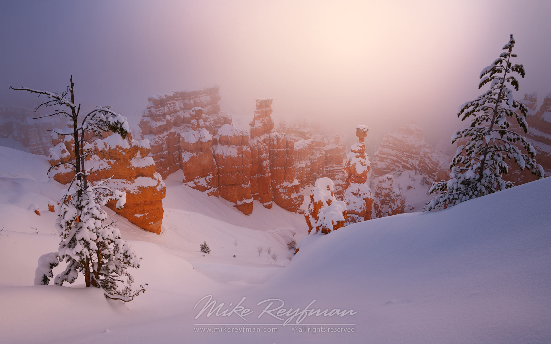 Thor's Hammer in Morning Fog. Bryce Canyon National Park, Utah, USA. - Bryce-Canyon-National-Park-Utah-USA - Mike Reyfman Photography