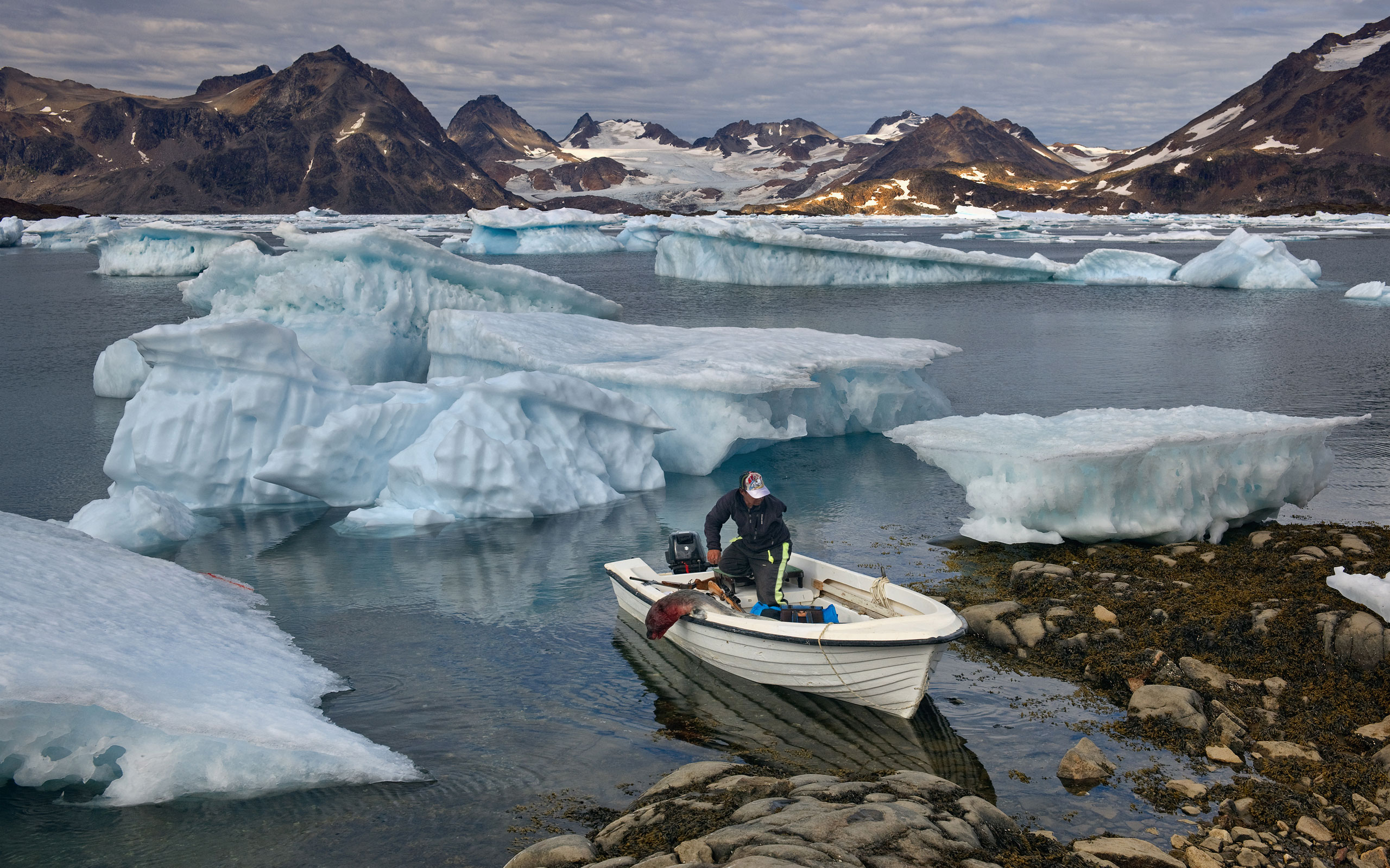 One-armed Inuit man coming back after seal hunt to settlement of Kulusuk. Torsuut Tunoq sound, Southeastern Greenland. - Greenland-Iceberg-Factory-1 - Mike Reyfman Photography