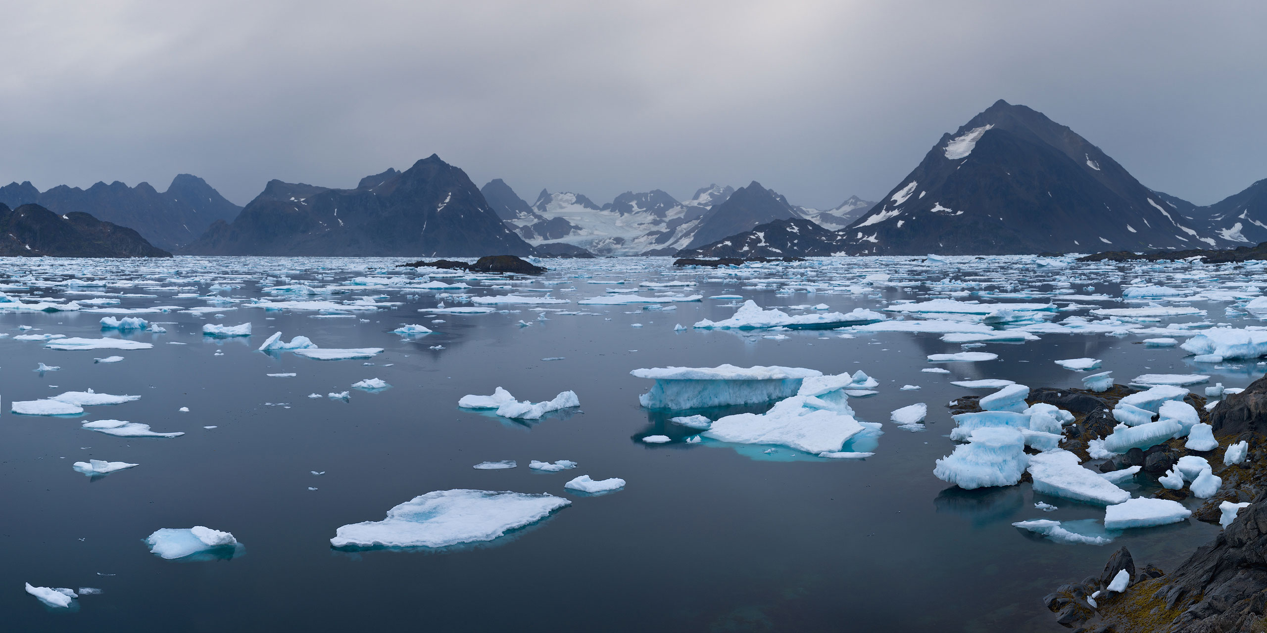 Gray morning. Distant view of The tidewater Apusiaajik Glacier. Torsuut Tunoq sound, Southeastern Greenland. - Greenland-Iceberg-Factory-1 - Mike Reyfman Photography