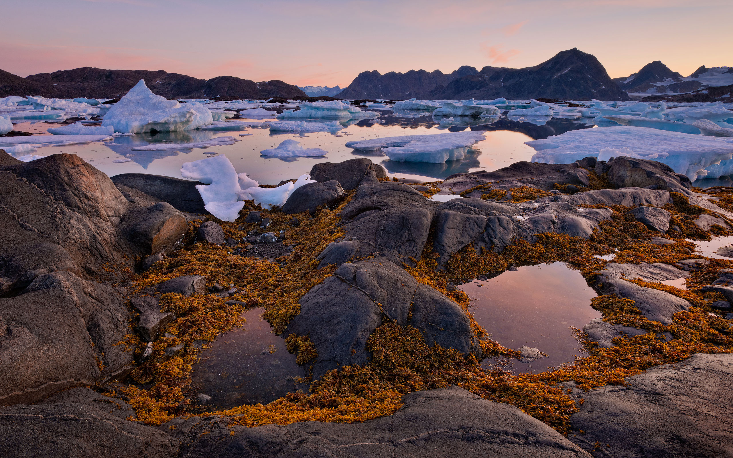 Low tide. Torsuut Tunoq sound at dawn. Southeastern Greenland. - Greenland-Iceberg-Factory-1 - Mike Reyfman Photography