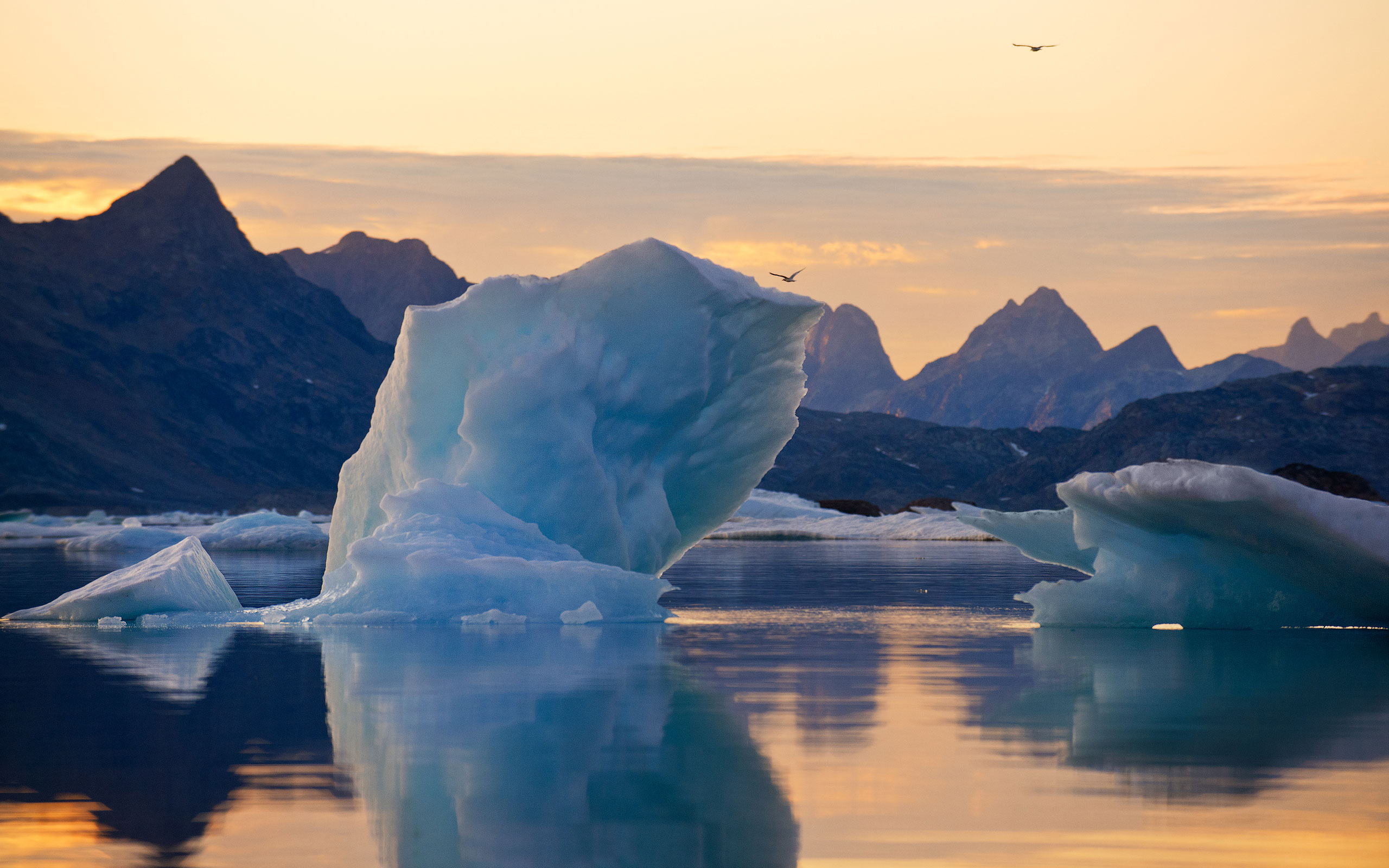 Sunset by the shores of Angmagssalik island. Southeastern Greenland. - Greenland-Iceberg-Factory-1 - Mike Reyfman Photography