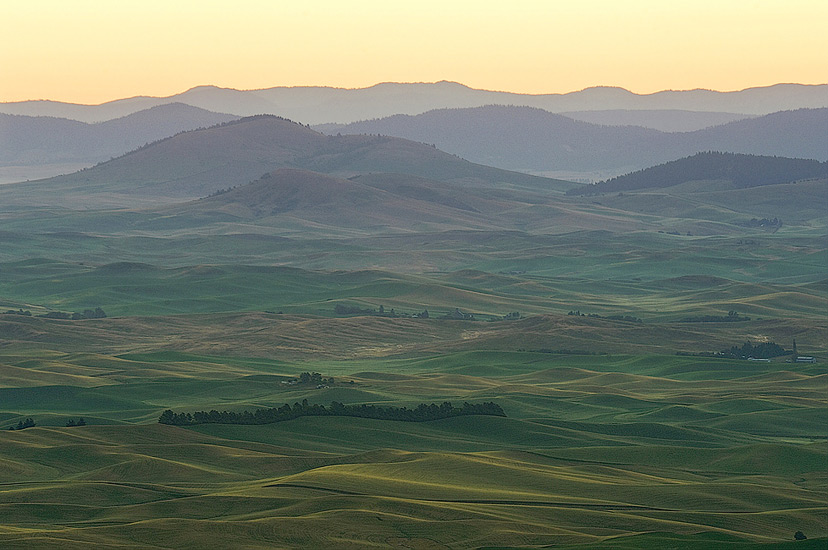 Rolling hills of Palouse in pre-dawn light. Steptoe Butte, Washington, USA. - Palouse-Eastern-Washington-American-Tuscany - Mike Reyfman Photography
