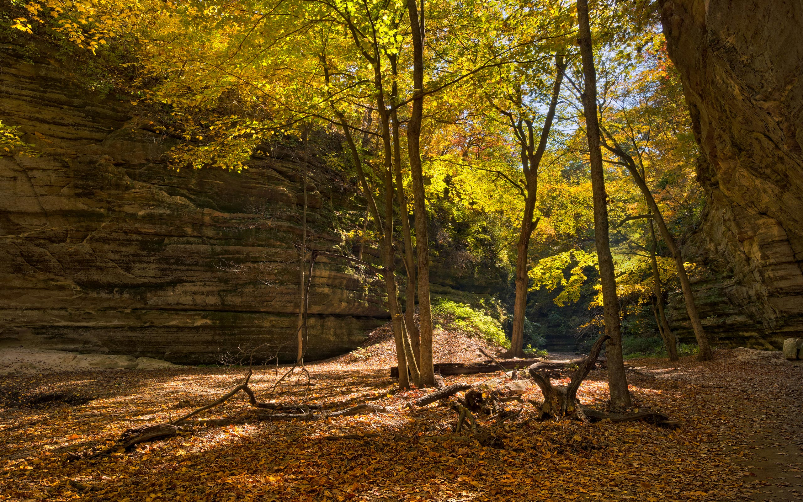 Kaskaskia Canyon Starved Rock State Park Illinois  Mike