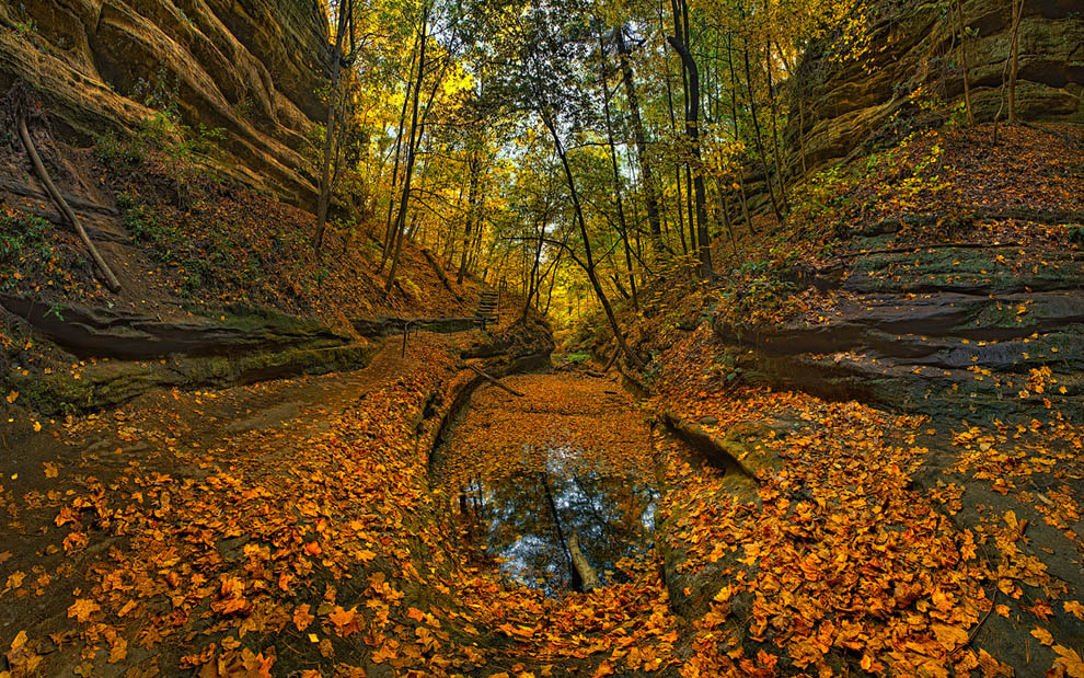 Fall Colors French Canyon Starved Rock State Park