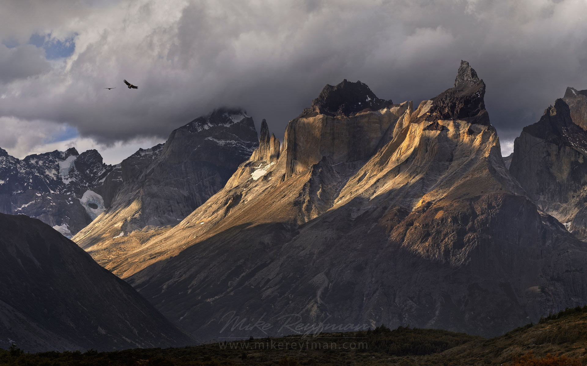 Condors flying by Cuernos del Paine. Torres del Paine National Park, Ultima Esperanza Province, Magallanes and Antartica Chilena Region XII, Patagonia, Chile. - Torres-Del-Paine-National-Park-Patagonia-Chile - Mike Reyfman Photography