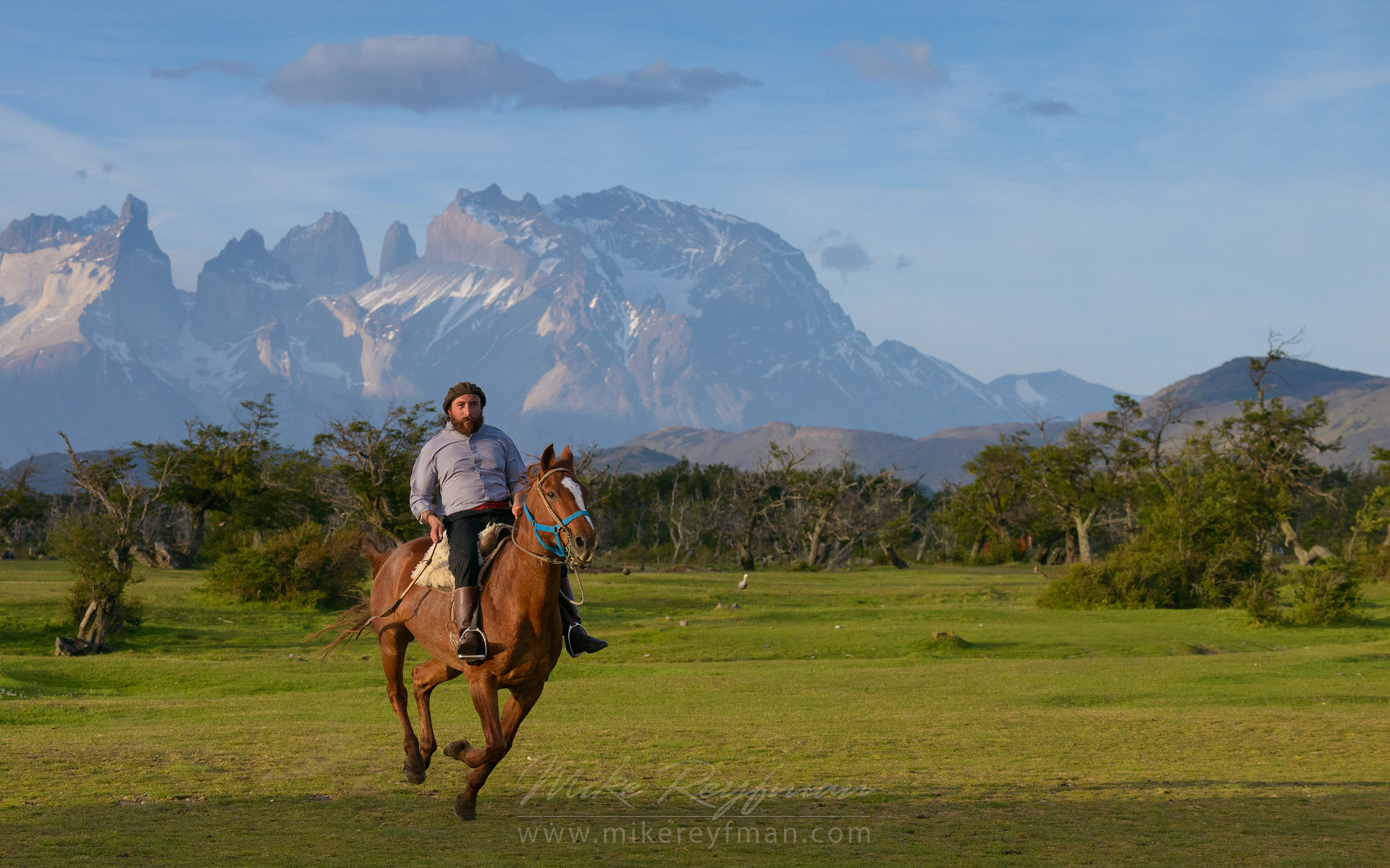 Local gaucho and estancia owner Mauricio galloping on a horse. Beautiful mountains of Torres del Paine National Park are on the backdrop. Ultima Esperanza Province, Magallanes and Antartica Chilena Region XII, Patagonia, Chile.  - Patagonia-Wildlife-and-Horses - Mike Reyfman Photography