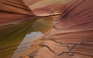 The Wave. North Coyote Buttes, Paria Canyon, Vermilion Cliffs Wilderness Area, Arizona, USA - Landscape, Nature and Cityscape Photography - Mike Reyfman Photography - Fine Art Prints, Stock Images, Nature Abstracts