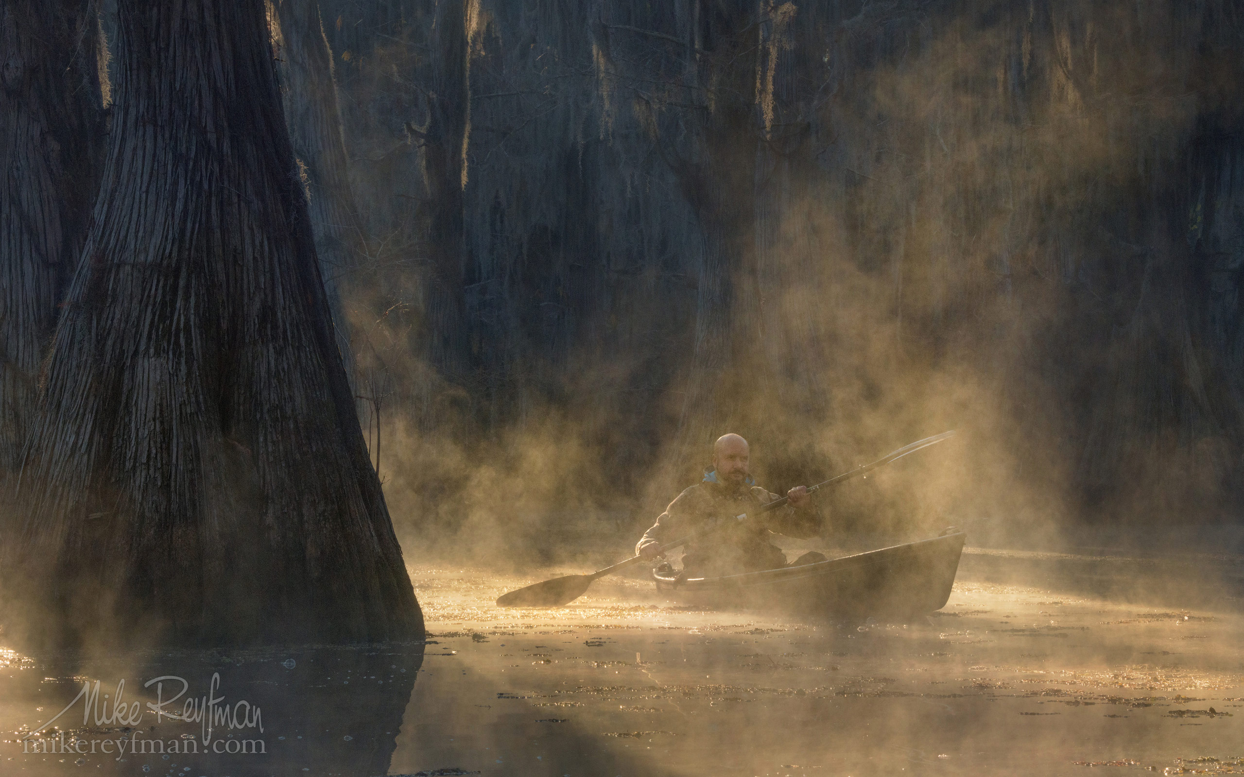 Kayaker paddling between Bald Cypress trees in the fog. Caddo Lake, Texas, US 047-LT1-50A3538.jpg - Bold Cypress and Tupelo Trees in the swamps of Atchafalaya River Basin. Caddo, Martin and Fousse Lakes. Texas/Louisiana, USA. - Mike Reyfman Photography
