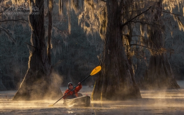 Kayaker-paddling-between-Bald-Cypress-trees-in-the-fog.-Caddo-Lake,-Texas,-US