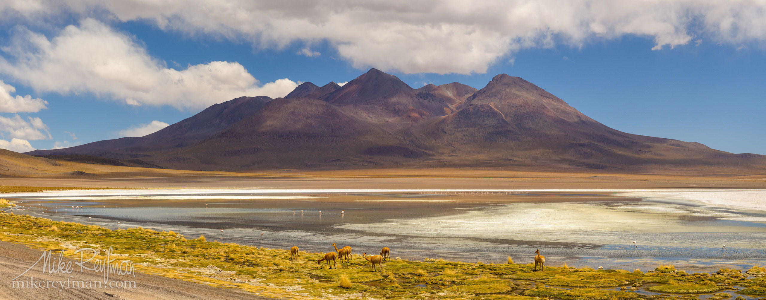 AA1-Q3X1148_Pano_1x2.55 - Atacama and Altiplano. The Driest Desert and The High Plain - Mike Reyfman Photography