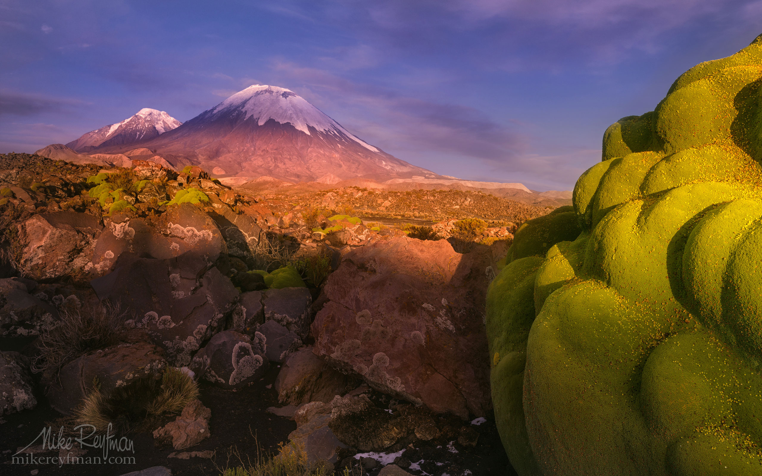 Parinacota and Pomerape Stratovolcanos (Nevados de Payachata) with Yareta plants on the foreground. Lauca Biosphere Reserve. Altiplano, Chile AA1-AIR3211_N - Atacama and Altiplano. The Driest Desert and The High Plain - Mike Reyfman Photography