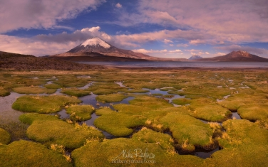 Parinacota-Stratovolcano-and-Chungara-Lake.-Lauca-National-Park,-Altiplano,-Chile