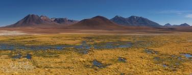 AA1-D1D8969_Pano_1x2.55 - СОЛЬ ЗЕМЛИ или Путешествие по Высокой Плоскости, Атакама и Альтиплано. Чили, Боливия  •  ноябрь 2018 - Mike Reyfman