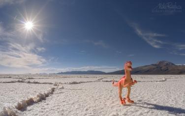 AA1-AIR2234 Prehistoric. Salar de Uyuni, Altiplano. Daniel Campos Province, Potosí, Bolivia