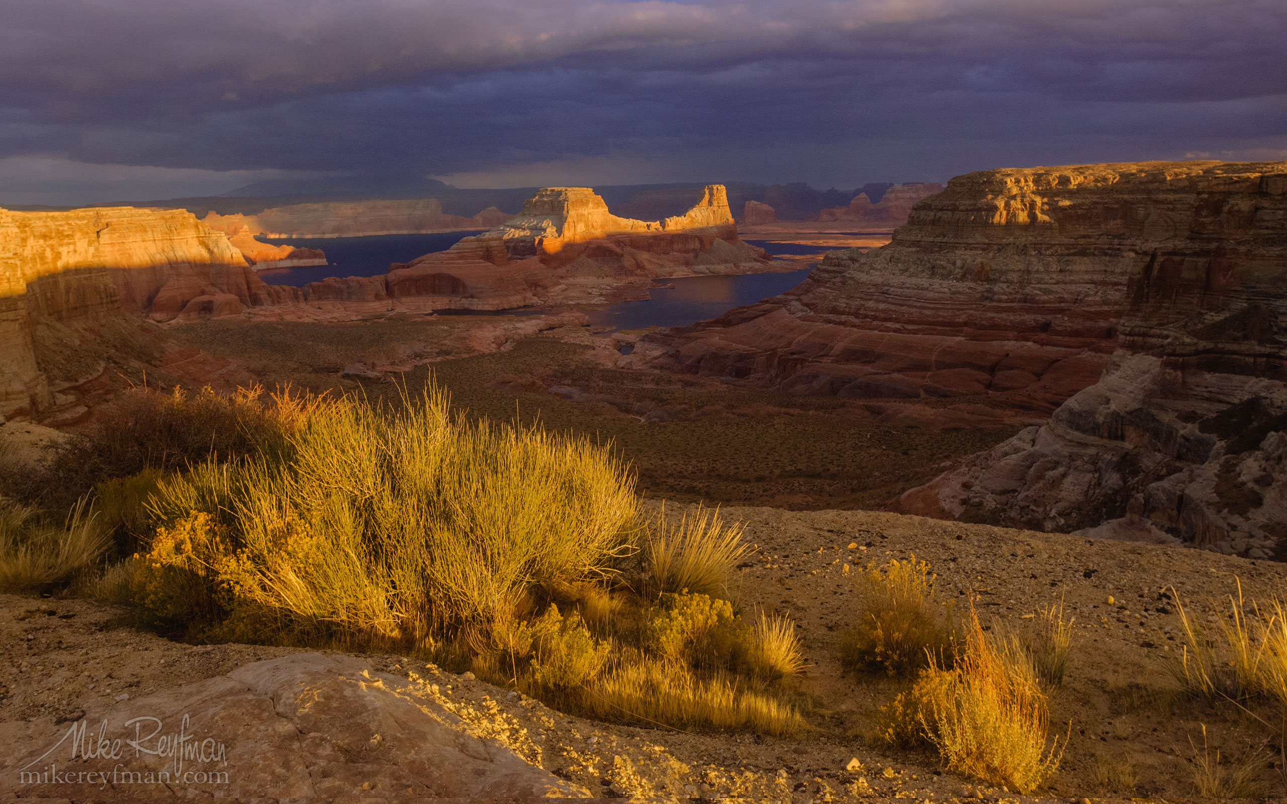 Romana Mesa, Alstrom Point. Gunsight Butte in Padre Bay. Lake Powell, Glen Canyon NRA, Uta/Arizona, USA. 014-LP3_MER0523.jpg - Lake Powell, Glen Canyon NAR. Colorado and Sun Juan Rivers. Utah/Arizona, USA  - Mike Reyfman Photography