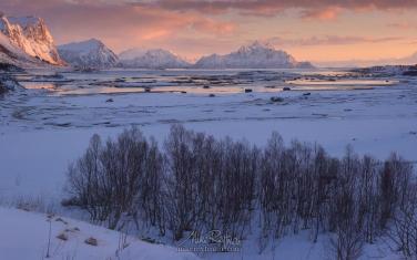 LF-MRD1E0341-44 Skifjorden sunrise. Skifjorden, Vestvagoy, Lofoten archipelago, Nordland, Norway.