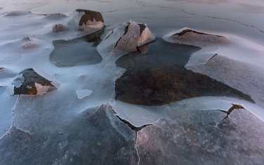 LF-MRD1E1796 Aliens in Leknes harbor. Vestvagoy, Lofoten archipelago, Nordland, Norway