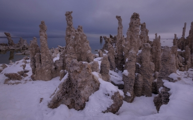 ML1-MRN3X0763 Mono Lake, Tufa State Natural Reserve, Eastern Sierra, California, USA