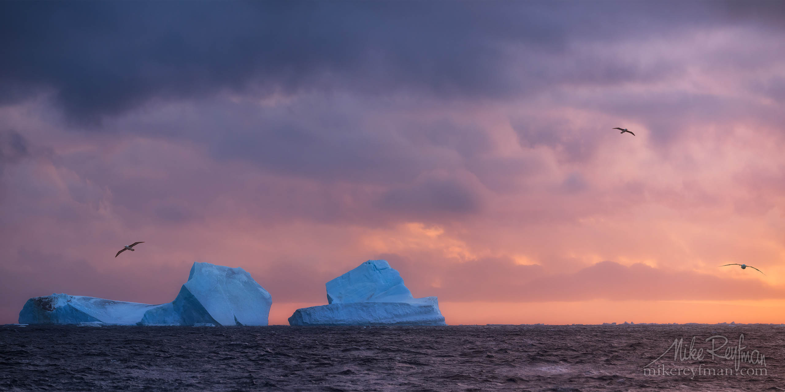 Bergs and Albatrosses in the Antarctic Sound. P12-MRD1A7214-15-Pano - Selected panoramic images with 2:1 aspect ratio - Mike Reyfman Photography