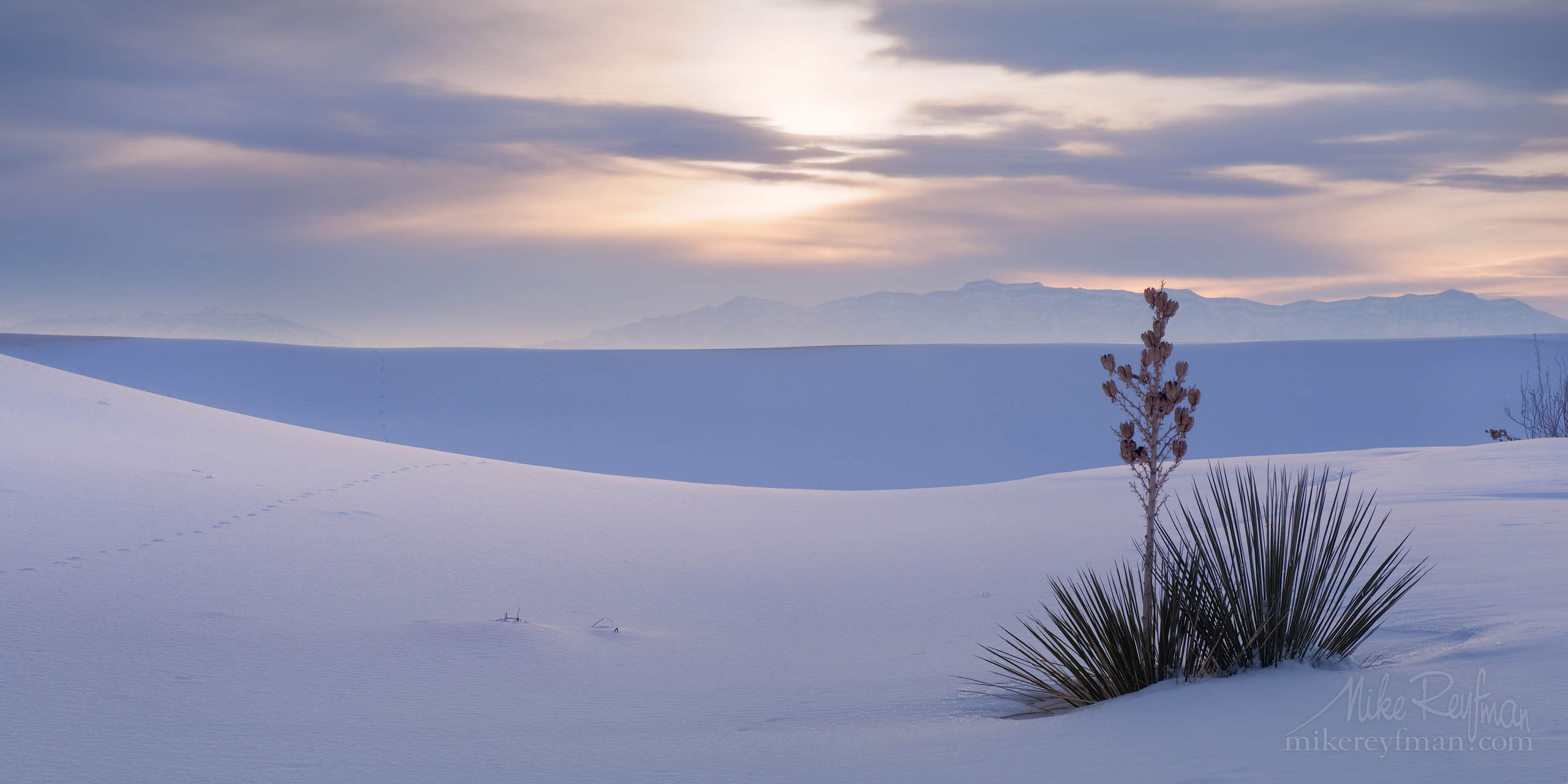White over White. Fresh snow in White Sands National Monumen, New Mexico P12-MRM3X8661 - Selected panoramic images with 2:1 aspect ratio - Mike Reyfman Photography