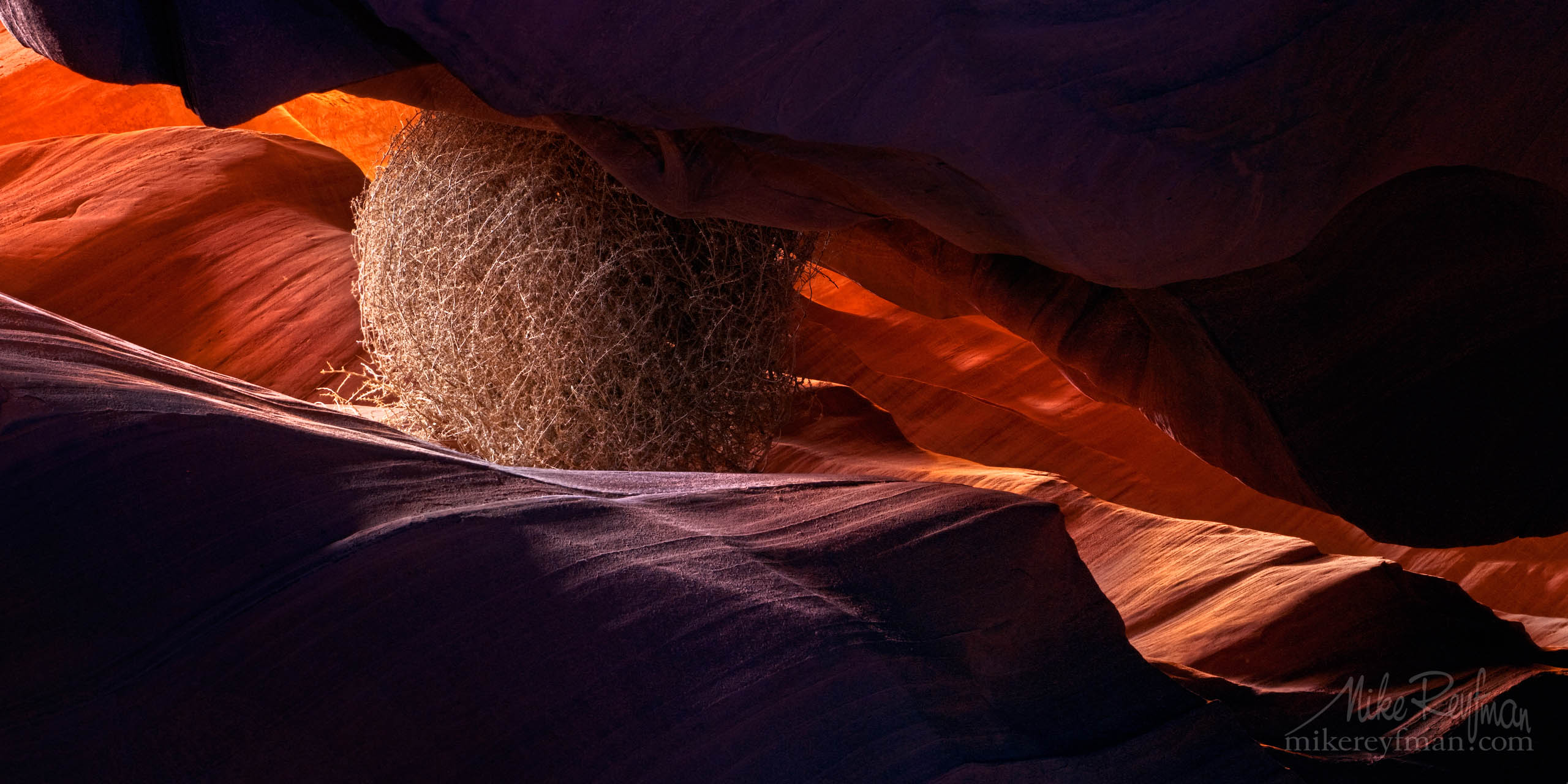 Under the Pressure. Tumbleweed stuck in a sandstone rock formation at Upper Antelope Canyon, Arizona, USA. P12-MRMER7257-8-9 - Selected panoramic images with 2:1 aspect ratio - Mike Reyfman Photography