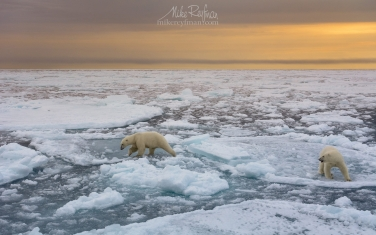 07.jpg MIDNIGHT LIGHT OF ARCTIC SPRING Svalbard Photo Expedition, April-May 2020 - Mike Reyfman