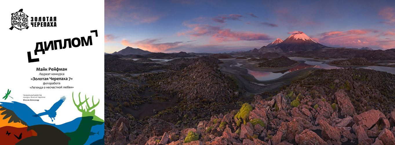2012-GoldTartle-Lanscape-MikeReyfman-small