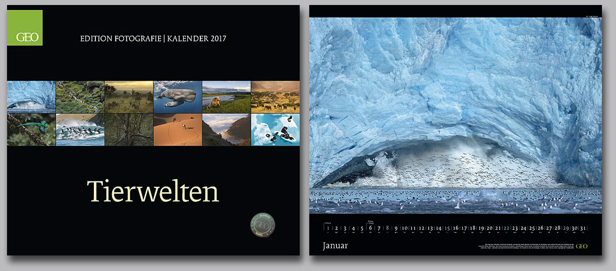 GEO-Edition-Wildlife-Calendar-2017