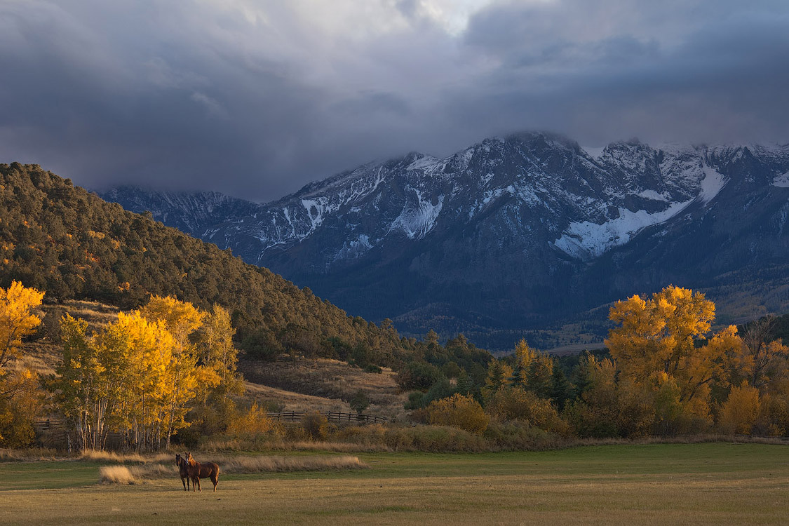 Mike-Reyfman__Fall-Pastoral